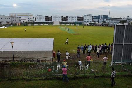Migrant workers enjoy a weekend of cricket