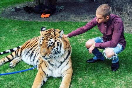 US animal rights group roar at Bieber's tiger act
