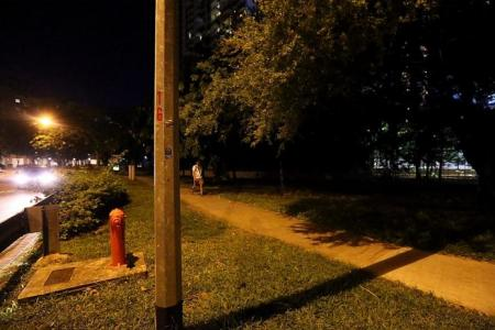 Woman raped thrice in public in 20 minutes