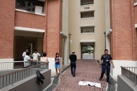 Yishun man pleads guilty to hurling cat from 13th storey