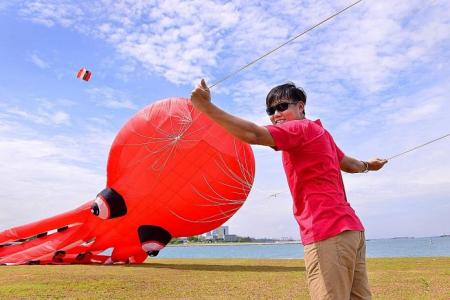 Cultivating the kiting spirit