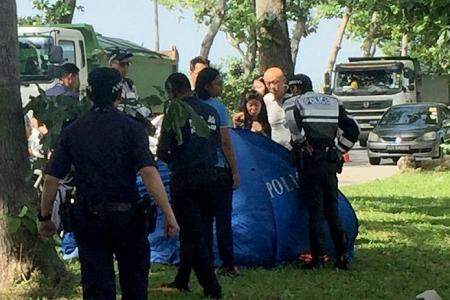 Navy NSF killed in SUV crash near naval base