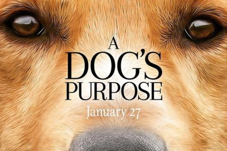 Movie Poster: A Dog's Purpose
