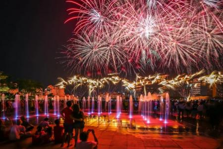 Photo of fireworks wins TNP National Day Photo Contest