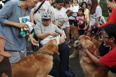 Dog owners help fulfil young cancer patient's wish