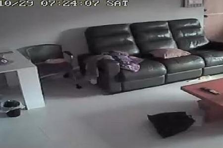 Unprotected webcams streamed live on the web
