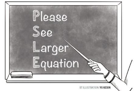 PSLE lessons that matter