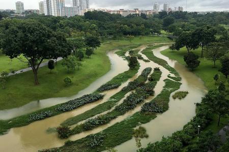 Multiple flash floods across island after downpour