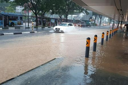 Rainfall this month tops last year's highest level