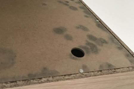 Family falls sick after mould grows on wardrobes