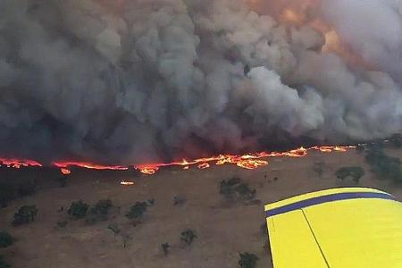 Evacuation order given as bush fires rage across NSW