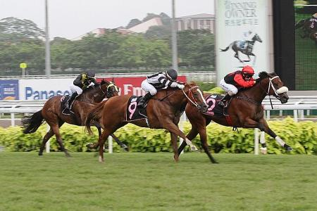 Storm Troops eases pain for Le Grange