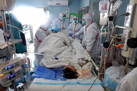Bird flu fear in China with 100 recent deaths