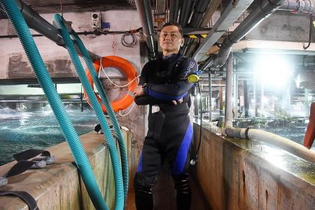 Diver's death ruled a tragic misadventure