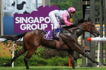 Debt Collector confirms Dubai race