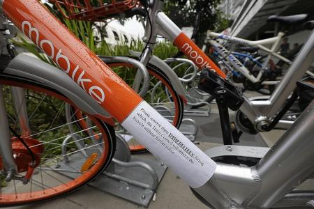 Town council: Parking racks not for use by rental bikes