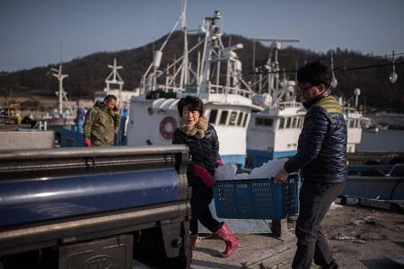 Sewol salvage raises hopes of better business