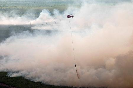 South Sumatra governor:'No haze this year, next year and the year after'