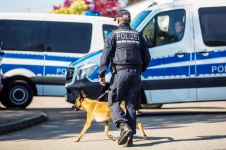 A policeman walking with a dog during the investigation.