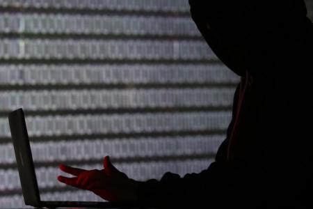Government portals among 9,000 regional servers hit by malware: Interpol