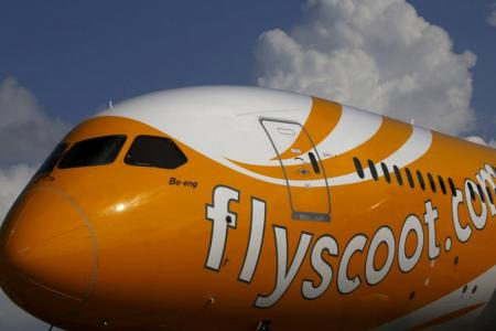 Scoot: No proof of bedbugs after searching plane
