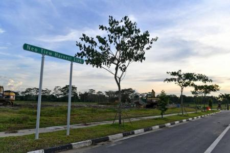 AVA to tender out 60ha of farm land