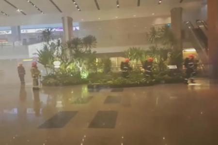 Fire at Changi Airport causes significant delays