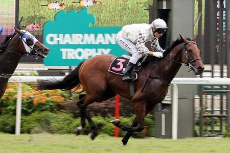 Gallops by horses engaged for friday
