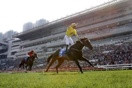 Werther makes it a one-horse affair