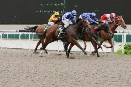 Tannhauser hangs on for close win