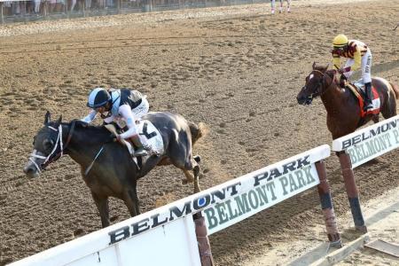 Tapwrit guns down Belmont Stakes favourite