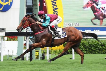 Beat The Clock 'a Group class horse'