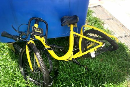 Bicycle becomes killer litter
