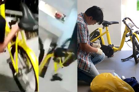 ofo bike thrown from HDB