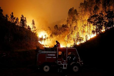 Raging fires in Portugal kill at least 62