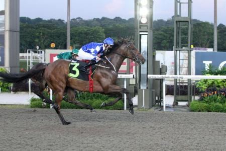 Chopin's Fantaisie set for hat-trick