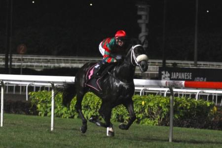 What a Super win by the Tycoon