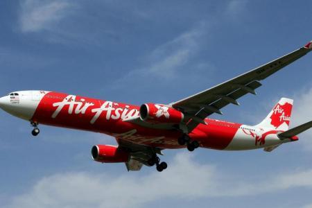 Bird strike grounds AirAsia flight
