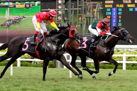 High calibre of participants a boost to HK racing