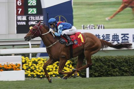 Rapper Dragon voted HK Horse of the Year