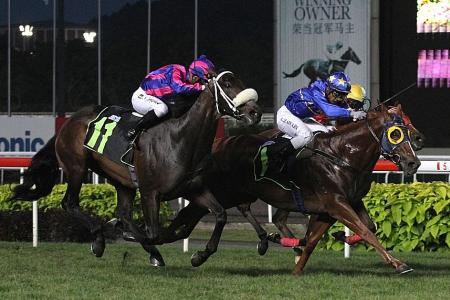 Lim's Sparkle wins in three-way finish