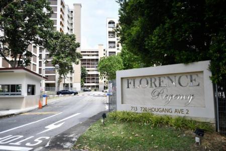 Another former HUDC estate set to go en bloc