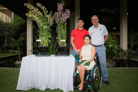 Swimmers Schooling and Yip first local athletes to have orchids named after them