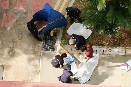 Father-daughter found dead in Pasir Ris