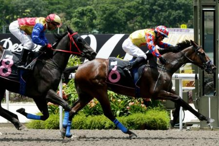 Hongchen gives Nurshahril first winner of the year