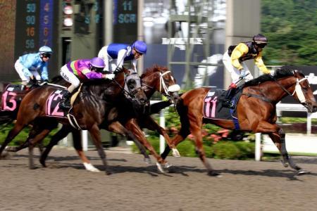 Mighty Emperor gives Krisna first Kranji winner