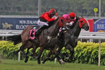 Super Fortune has eyes on a hat-trick