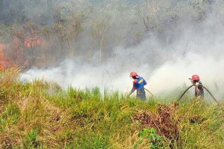 Jakarta warns of more fires in coming weeks