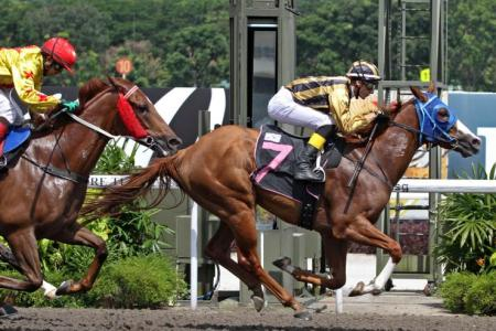 Curatolo snares a double on Kranji debut