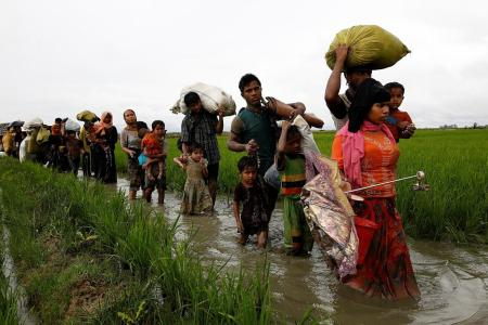 73,000 Rohingya flee as Myanmar govt searches for insurgents